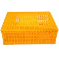 Jaula Plástico Laranja Transporte Aves ou Coelhos