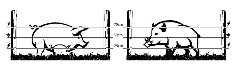 Instalação de cerca electrica