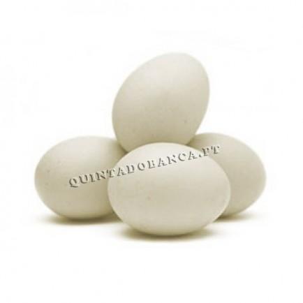 Ovos de Cerâmica Brancos - Galinha