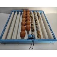 Tabuleiro Automático 62 ovos Galinha c/ Rolos